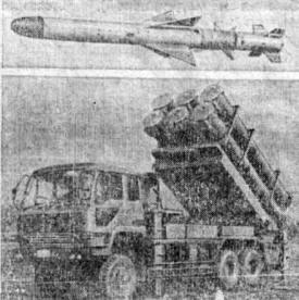 Пусковая установка и крылатая ракета японской разработки класса <берегкорабль>
